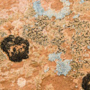 Do rocks gaze at stars? Utah sandstone speaks of galactic consciousness…