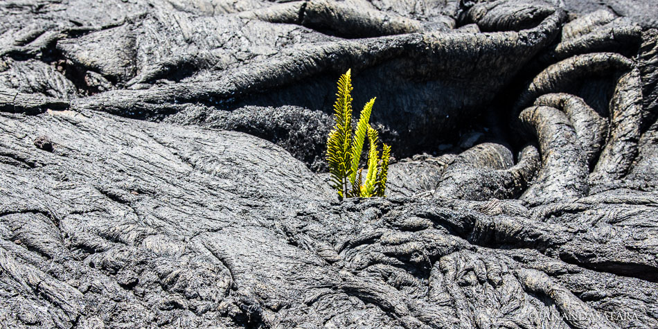 Earth changes lava field