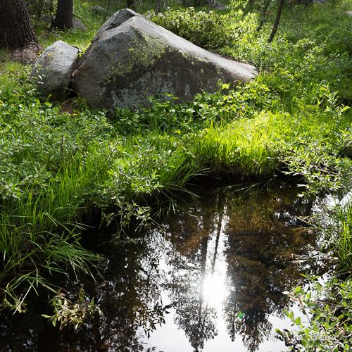 High vibrational reflection