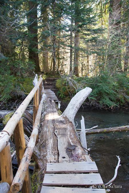 soul awakening bridge