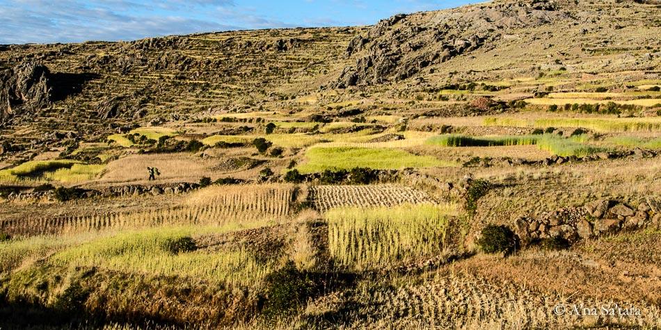 Lake Titicaca Amantani Island Ley Line