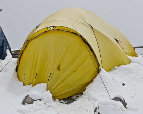 Tent at Gorak Shep